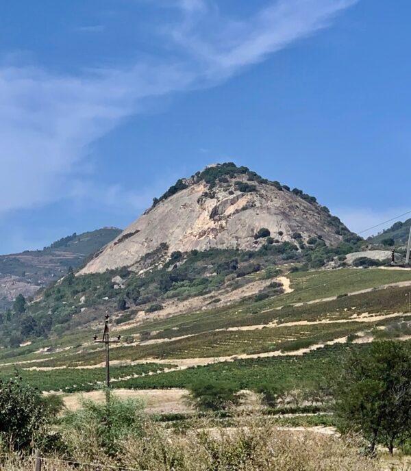 Babylons Peak Shiraz Carignan