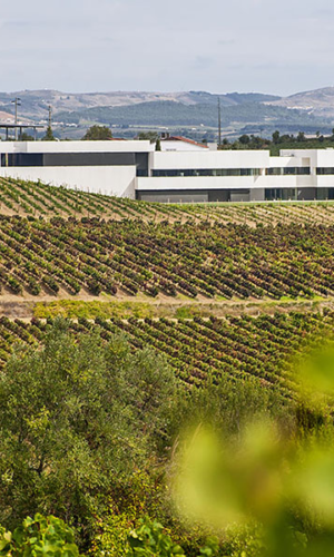 Quinta de Boavista