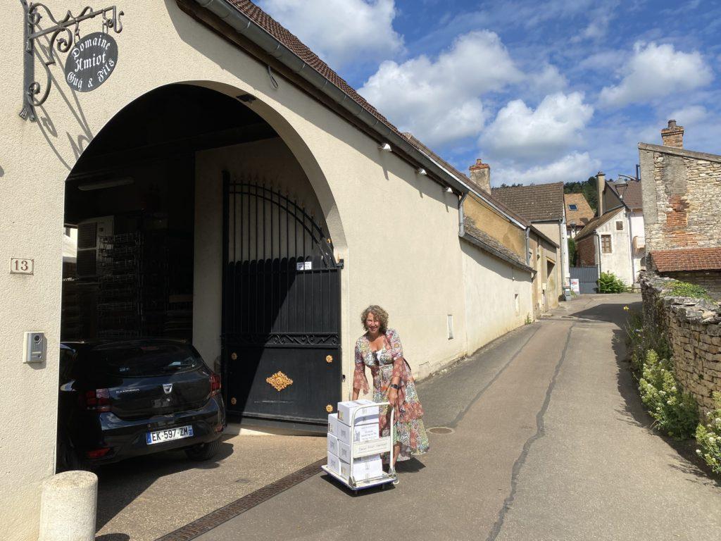 Bourgogne Pinot Noir Guy Amiot et Fils